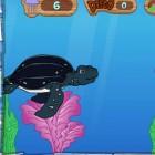 Играть Диего и черепаха онлайн