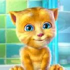 Играть Говорящий котёнок онлайн